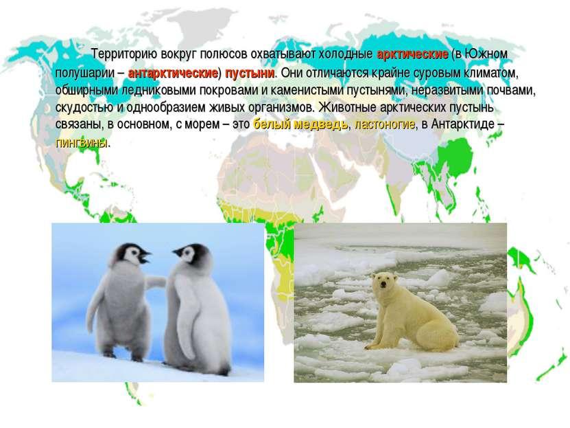 Территорию вокруг полюсов охватывают холодные арктические (в Южном полушарии ...