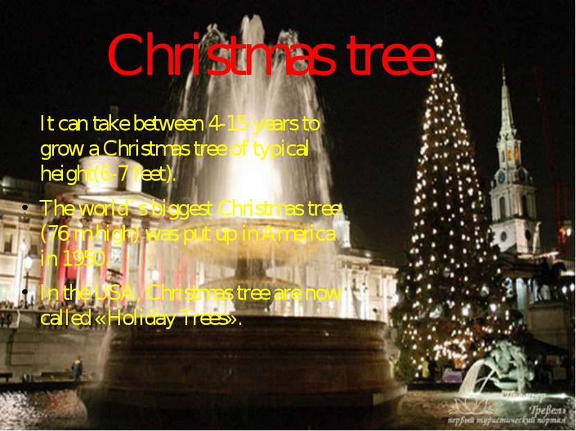 Christmas tree It can take between 4-15 years to grow a Christmas tree of typ...