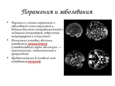Поражения и заболевания Изучение и лечение поражений и заболеваний мозга отно...