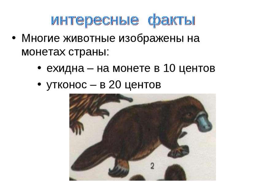 Многие животные изображены на монетах страны: ехидна – на монете в 10 центов ...