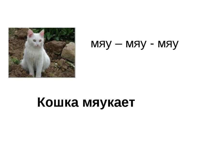 мяу – мяу - мяу Кошка мяукает
