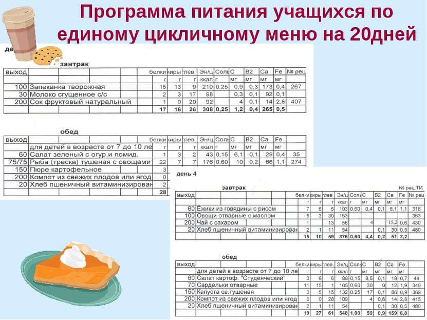 Программа питания учащихся по единому цикличному меню на 20дней