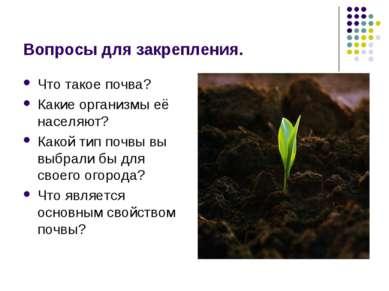Вопросы для закрепления. Что такое почва? Какие организмы её населяют? Какой ...