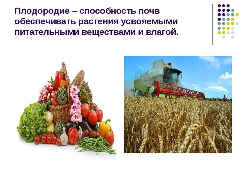 Плодородие – способность почв обеспечивать растения усвояемыми питательными в...