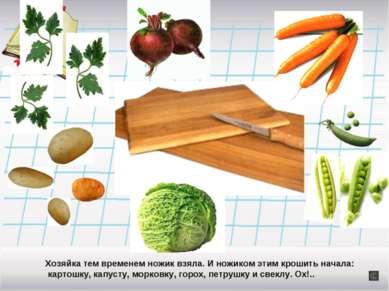 Хозяйка тем временем ножик взяла. И ножиком этим крошить начала: картошку, ка...