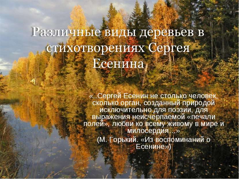 «..Сергей Есенин не столько человек, сколько орган, созданный природой исключ...
