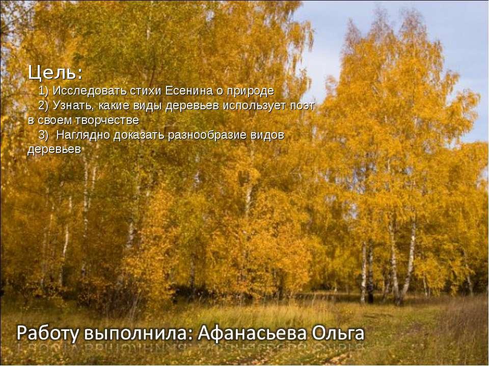 Цель: 1) Исследовать стихи Есенина о природе 2) Узнать, какие виды деревьев и...