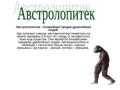 Австролопитеки - ближайшие предки древнейших людей Как полагают ученые, австр...