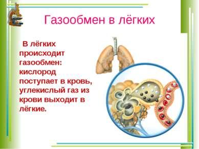 Газообмен в лёгких В лёгких происходит газообмен: кислород поступает в кровь,...