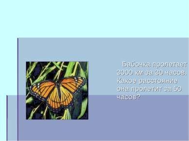 Бабочка пролетает 3000 км за 30 часов. Какое расстояние она пролетит за 50 ча...