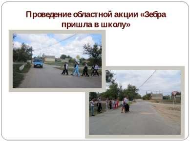 Проведение областной акции «Зебра пришла в школу»