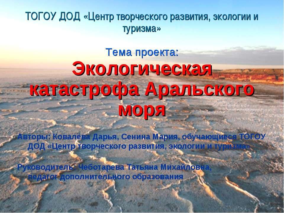 ТОГОУ ДОД «Центр творческого развития, экологии и туризма» Тема проекта: Экол...