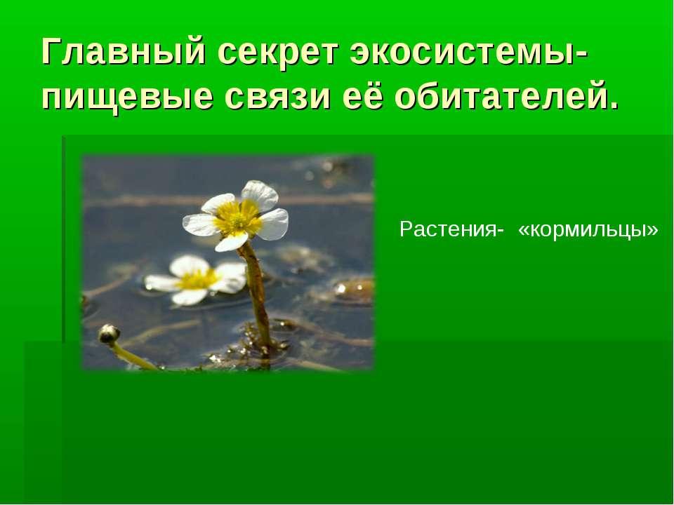 Главный секрет экосистемы- пищевые связи её обитателей. Растения- «кормильцы»