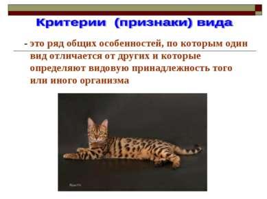 - это ряд общих особенностей, по которым один вид отличается от других и кото...