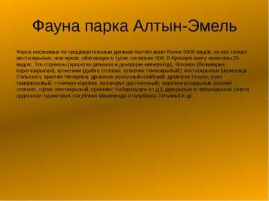 Фауна парка Алтын-Эмель Фауна насекомых по предварительным данным насчитывает...