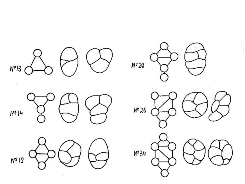 Мономерные гистионы и примеры их реализации