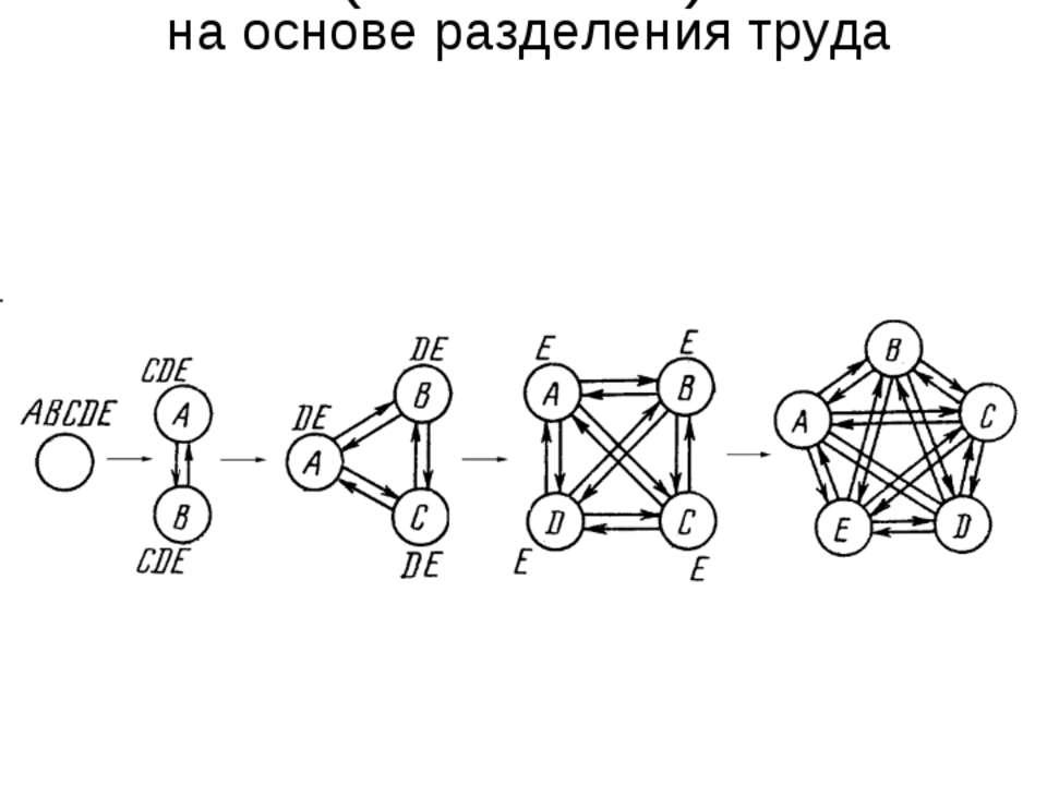 Этапы возникновения элементарных единиц многоклеточности (гистионов) на основ...