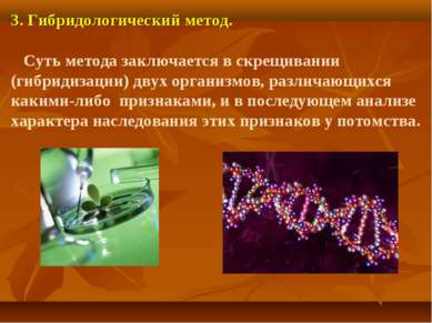 3. Гибридологический метод. Суть метода заключается в скрещивании (гибридизац...