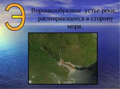 Воронкообразное устье реки, расширяющееся в сторону моря.