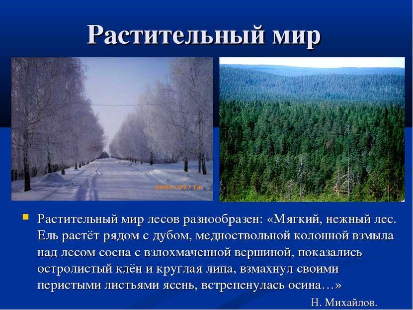 Растительный мир Растительный мир лесов разнообразен: «Мягкий, нежный лес. Ел...