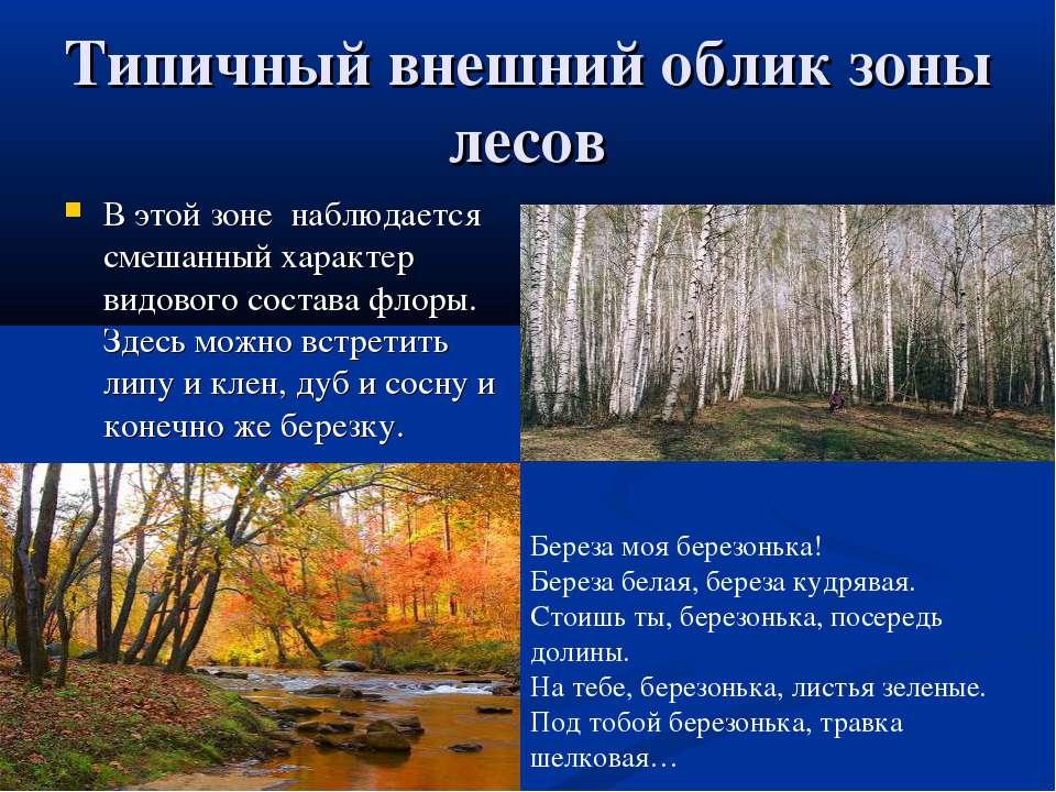 Типичный внешний облик зоны лесов В этой зоне наблюдается смешанный характер ...