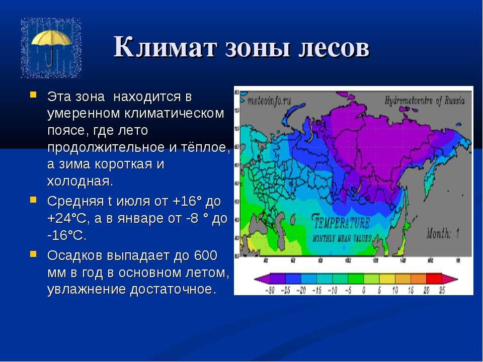 Климат зоны лесов Эта зона находится в умеренном климатическом поясе, где лет...