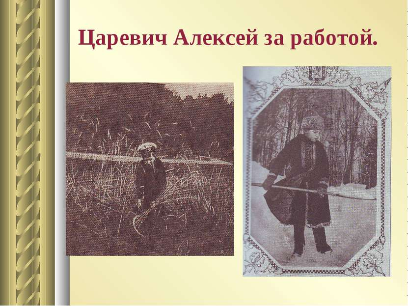Царевич Алексей за работой.