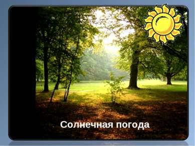 Солнечная погода