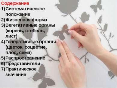 Содержание Систематическое положение Жизненная форма Вегетативные органы (кор...