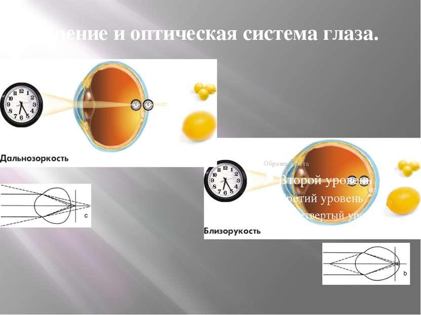 Зрение и оптическая система глаза.