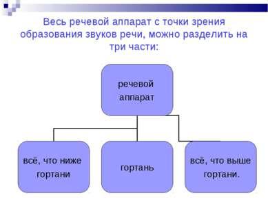 Весь речевой аппарат с точки зрения образования звуков речи, можно разделить ...