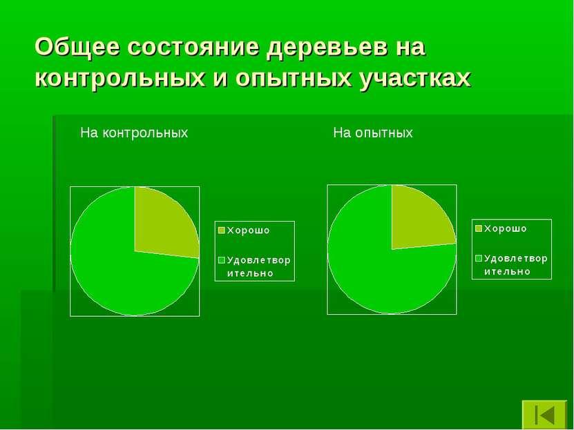 Общее состояние деревьев на контрольных и опытных участках На контрольных На ...