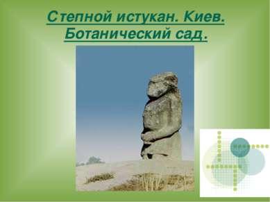 Степной истукан. Киев. Ботанический сад.
