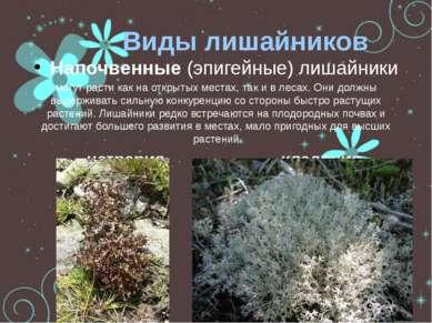 Виды лишайников Напочвенные (эпигейные) лишайники могут расти как на открытых...