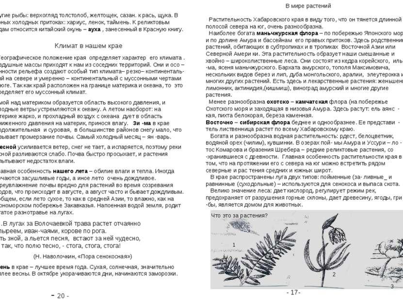 - 20 - - 17- В мире растений Растительность Хабаровского края в виду того, чт...