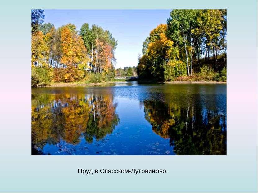 Пруд вСпасском-Лутовиново.