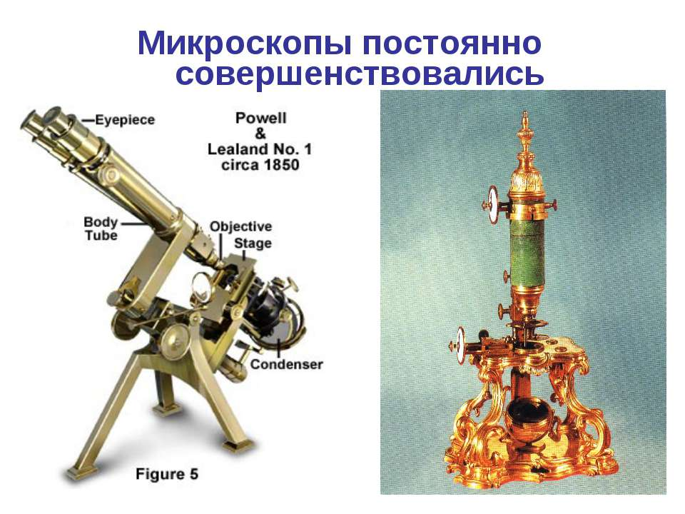 Микроскопы постоянно совершенствовались