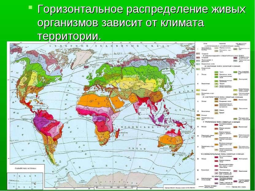 Горизонтальное распределение живых организмов зависит от климата территории.