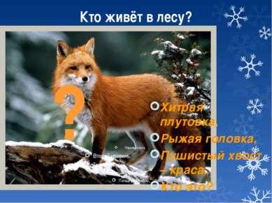Кто живёт в лесу? Хитрая плутовка, Рыжая головка, Пушистый хвост – краса, Кто...