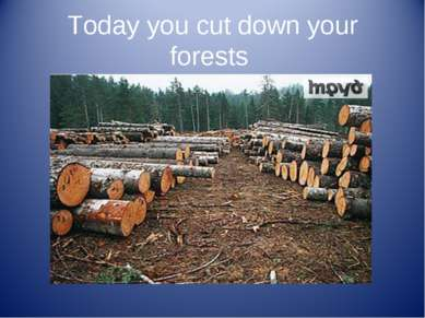 Today you cut down your forests