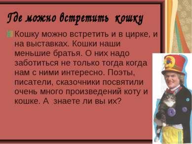 Кошку можно встретить и в цирке, и на выставках. Кошки наши меньшие братья. О...