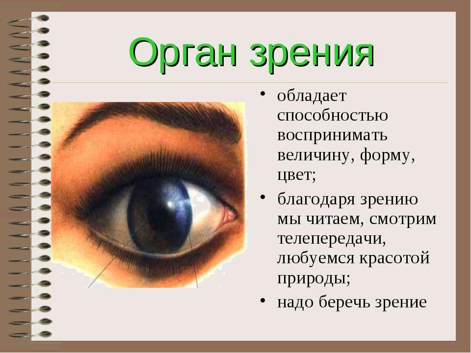 Орган зрения обладает способностью воспринимать величину, форму, цвет; благод...