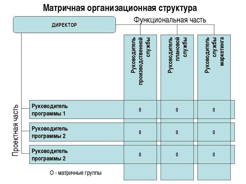 Матричная организационная структура ДИРЕКТОР Руководитель производственной сл...