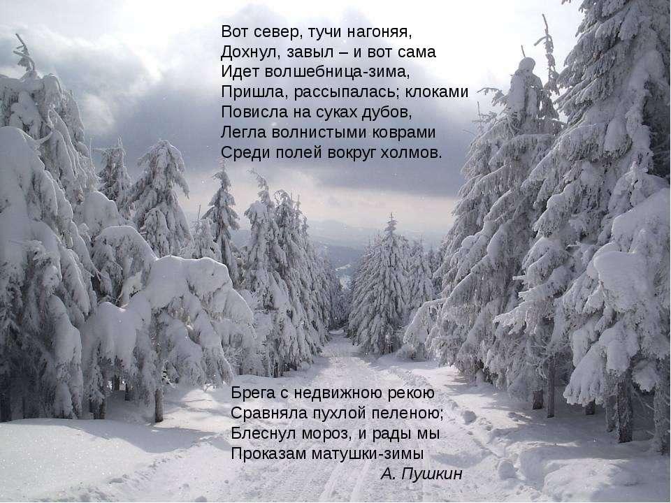 Брега с недвижною рекою Сравняла пухлой пеленою; Блеснул мороз, и рады мы Про...