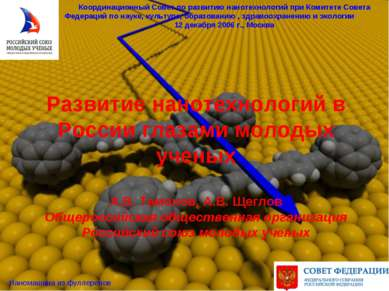 Развитие нанотехнологий в России глазами молодых ученых А.В. Тамонов, А.В. Ще...