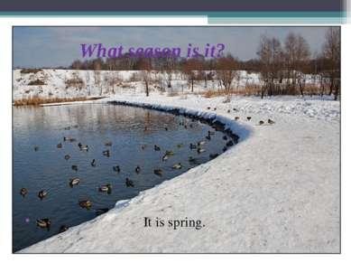 What season is it? It is spring.