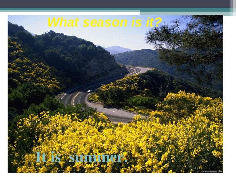 What season is it? It is summer.