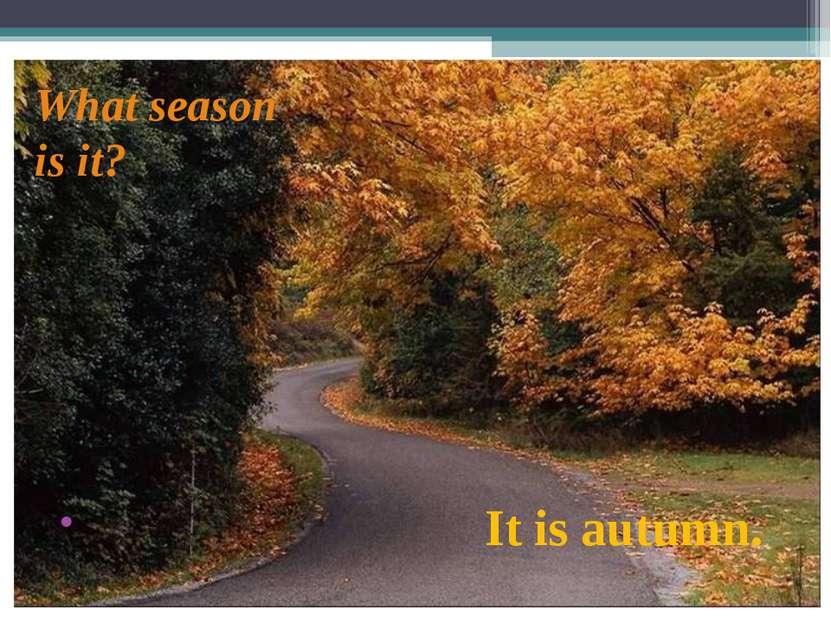 What season is it? It is autumn.