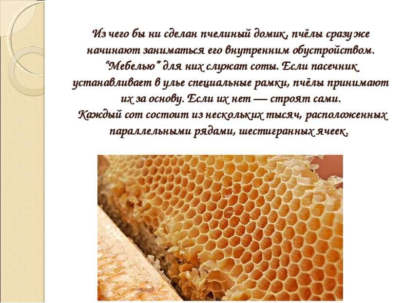 Из чего бы ни сделан пчелиный домик, пчёлы сразу же начинают заниматься его в...