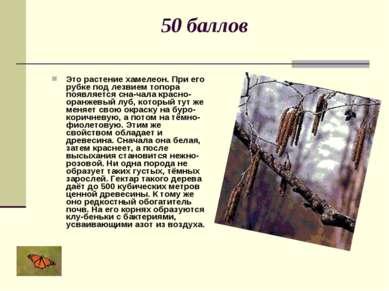 50 баллов Это растение хамелеон. При его рубке под лезвием топора появляется ...